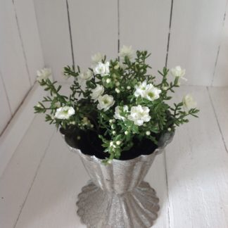 Antiqued pot with white flowers