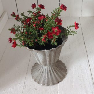 Antiqued pot with red flowers